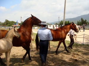 Tarifa en Andalucia