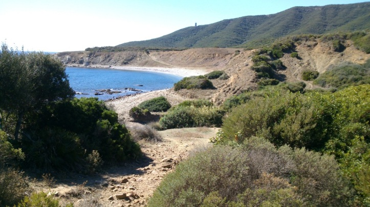 Naturaleza Salvaje en El Estrecho