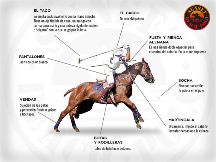 Guía Básica del Polo de Sunsetbeachpolo