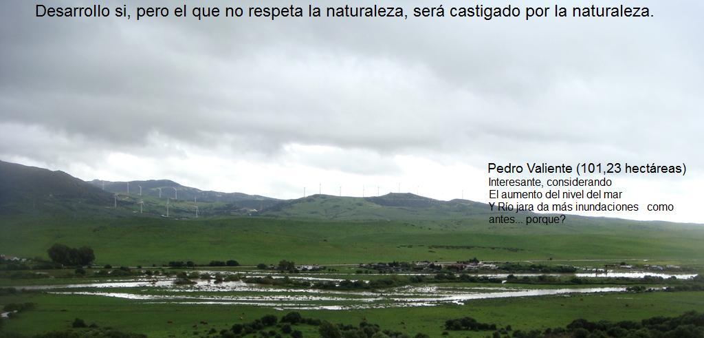 Terreno urbanizable o NO