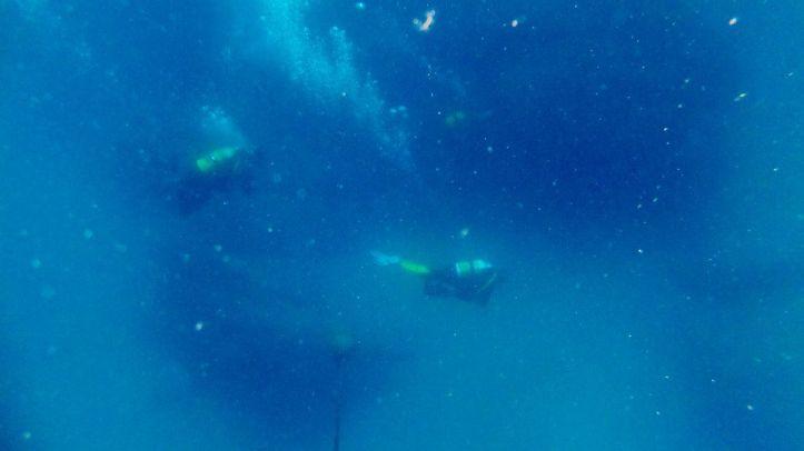 Bajo la superficie del agua