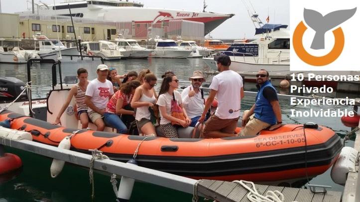 Alquilar una zodiac para la observación de ballenas en privada en Tarifa