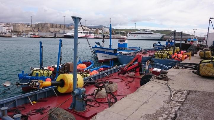 Los barcos de Almadraba en el Puerto de Tarifa