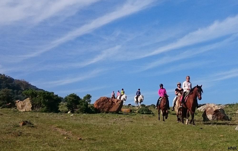 Rutas a caballo en un entorno único