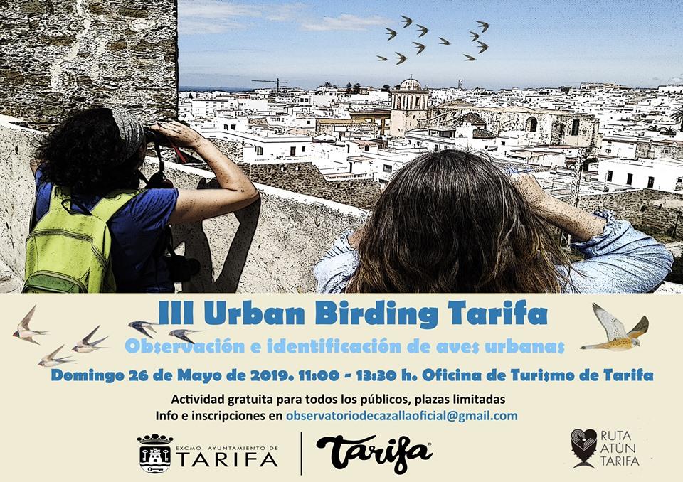 III Urban Birding Tarifa 2019