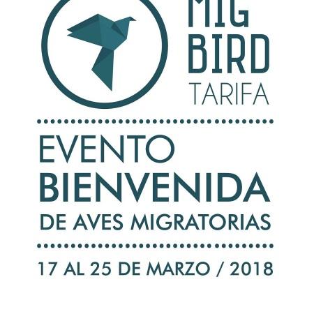 Mig Bird 2018
