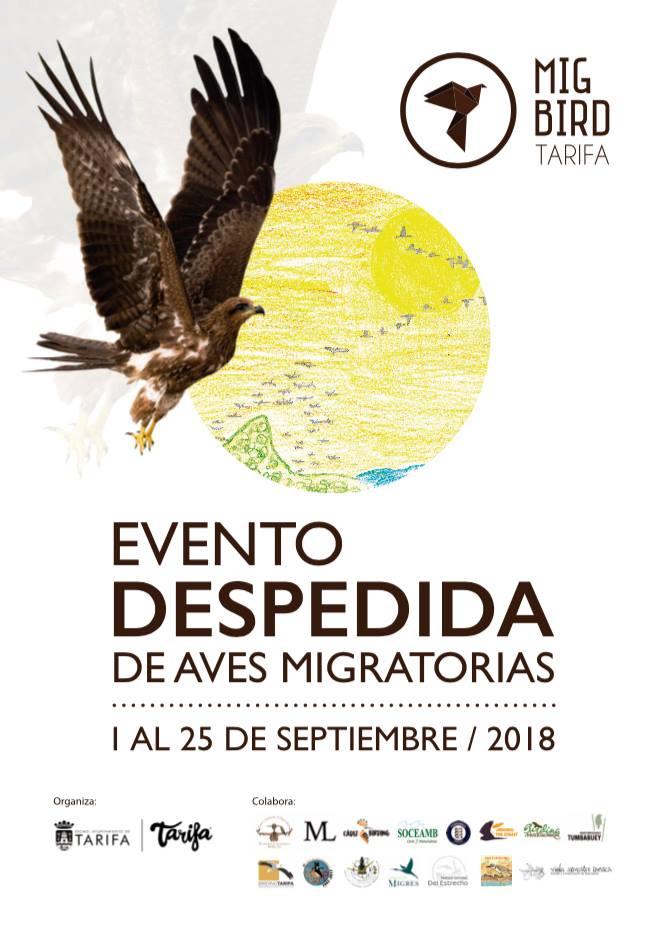 Evento despedida de aves migratorias