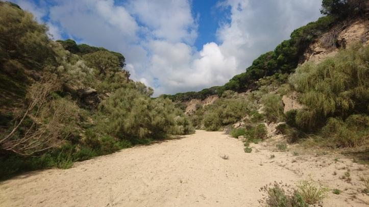 cañon del arroyo del puerco. ruta de senderismo