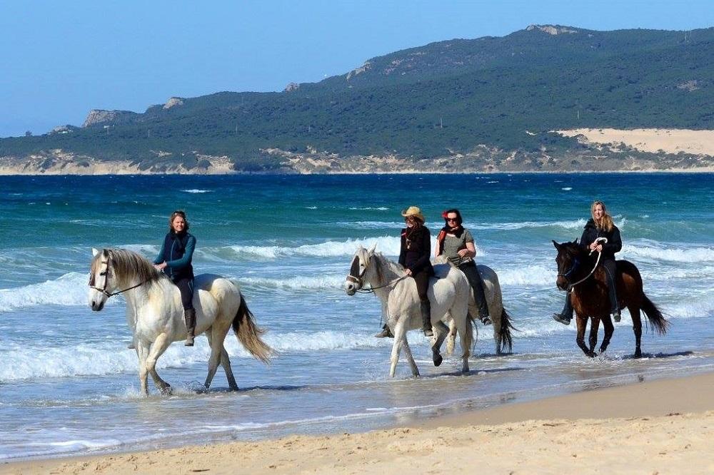 Montar a cabalo desde la costa del sol