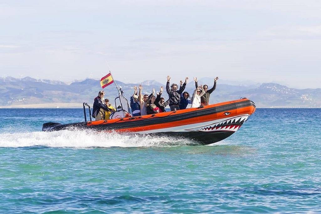 whalewatch.tours la excursión más popular desde la costa del sol